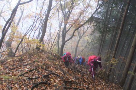 小雨の中の登山