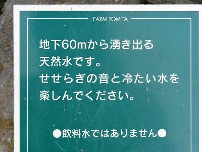 s-IMG_0246_20130818173034ada.jpg