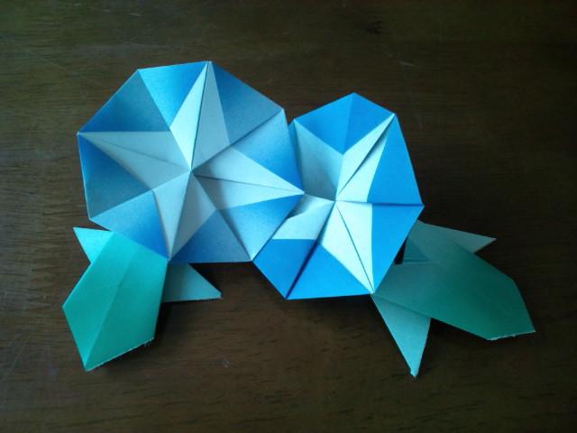 すべての折り紙 あさがお 折り紙 : ... 、庭に蒔いたあさがおの種は