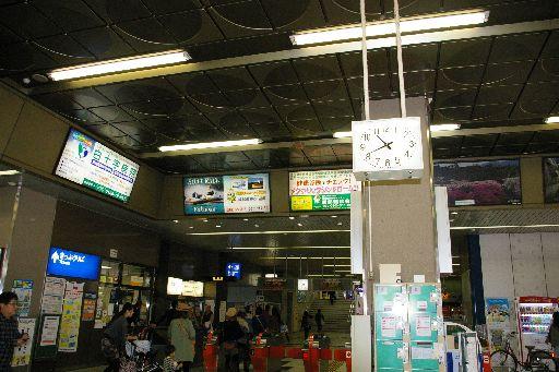 IMGP8953.jpg