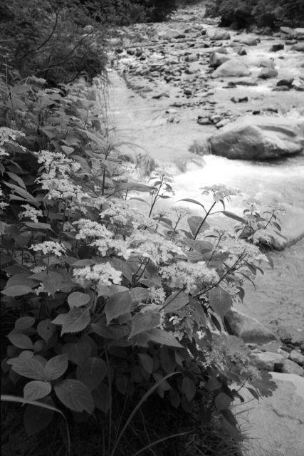 深山幽谷30c