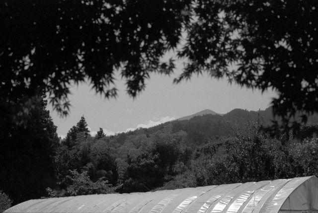 伊那の風景2013夏01c
