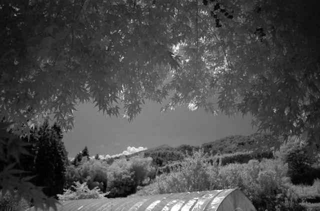 伊那の風景2013夏05d