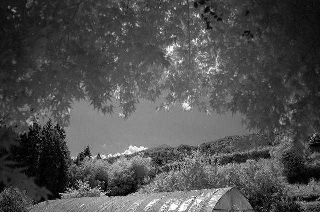 伊那の風景2013夏05b