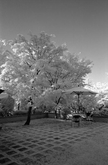 伊那の風景2013夏10a