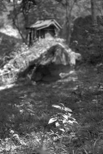 伊那の風景2013夏11d