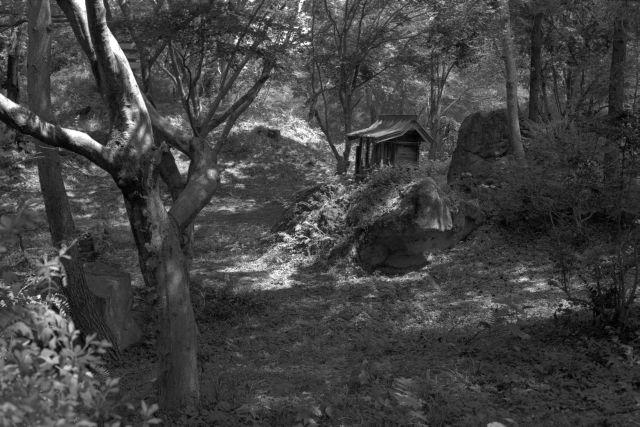 伊那の風景2013夏11c