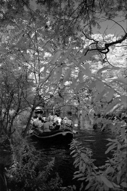 伊那の風景2013夏12a