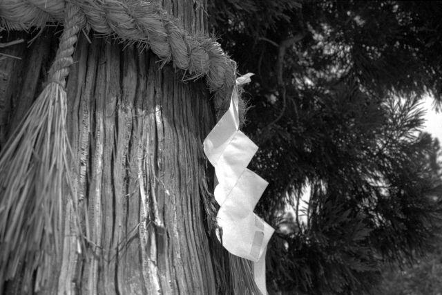 伊那の風景2013夏15c