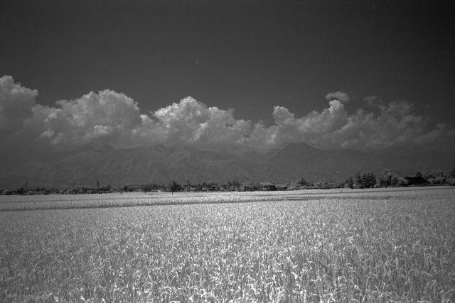 伊那の風景2013夏16b