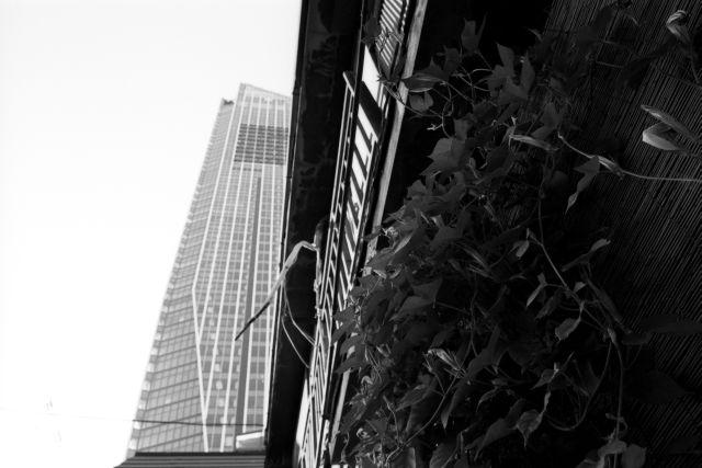 昭和の窓22a