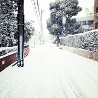 IMG_5456s.jpg
