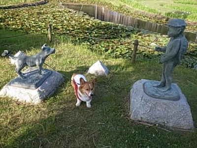 あやめ園河童と犬