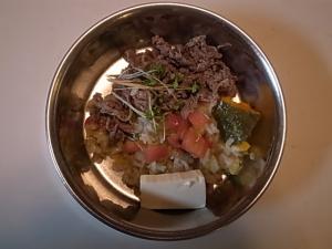 ハルのご飯2