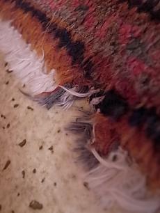 絨毯いたずら3