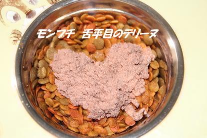 b_4959.jpg