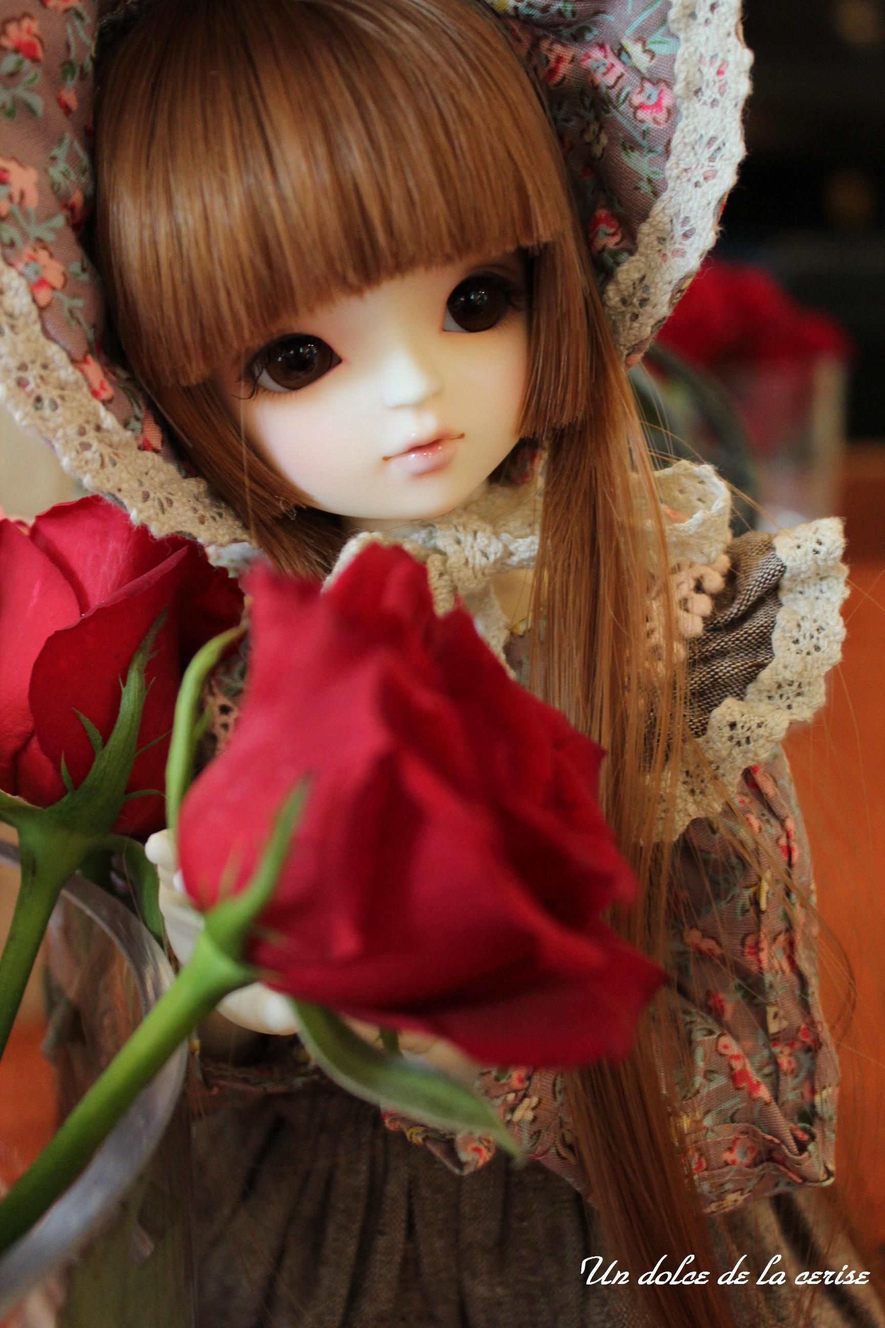 105_2014101321145012a.jpg