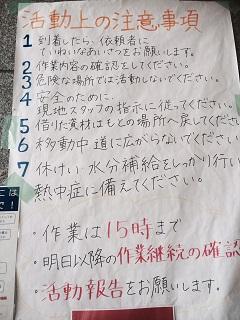 image12a.jpg