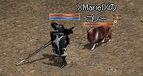 251004 006(コリー)