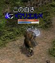 251017 001 (マリエル)