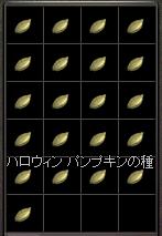 251102 013(種)