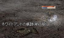 251117 022(火山)