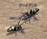 251120 003(アリ2)