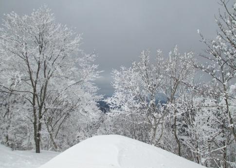 臥龍山スノーハイキング 023-001