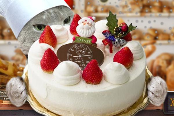 クリスマスケーキ20