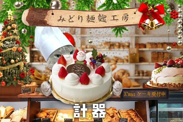 クリスマスケーキ21