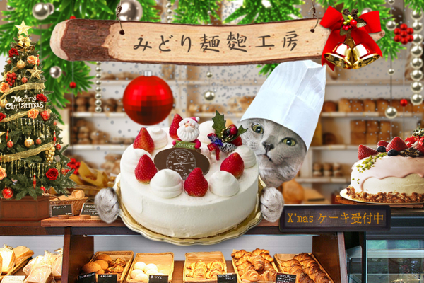 クリスマスケーキ22