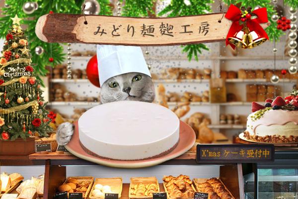 クリスマスケーキ31