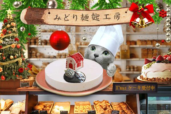 クリスマスケーキ33
