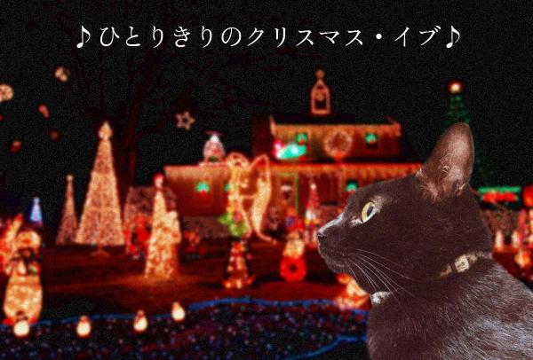 クリスマスイブ2014_4