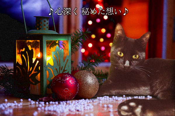 クリスマスイブ2014_6