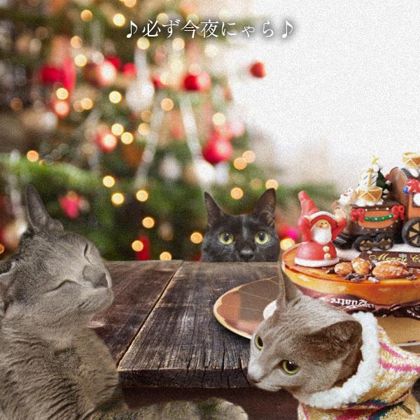 クリスマスイブ2014_8