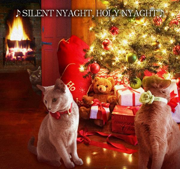 クリスマスイブ2014_10