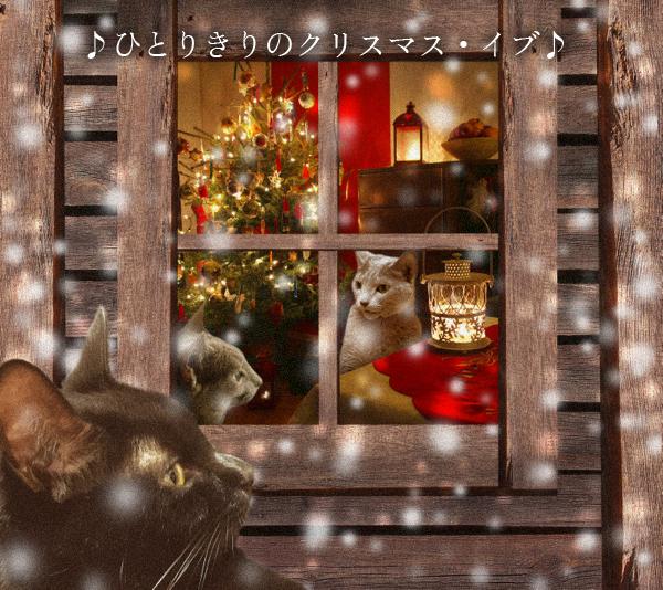 クリスマスイブ2014_12