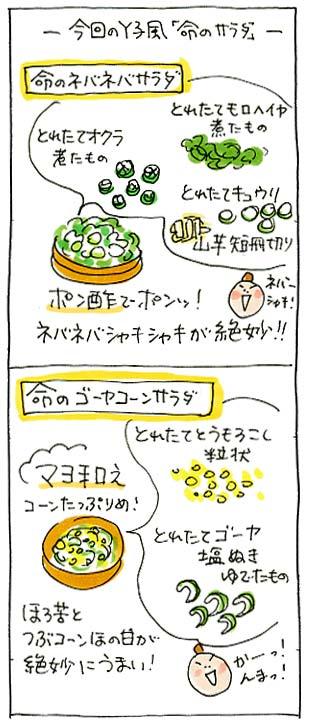 命のサラダ02