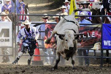 blog 40 Auburn, Bull Riding 8, Justin Rickard (70, Nuevo, CA