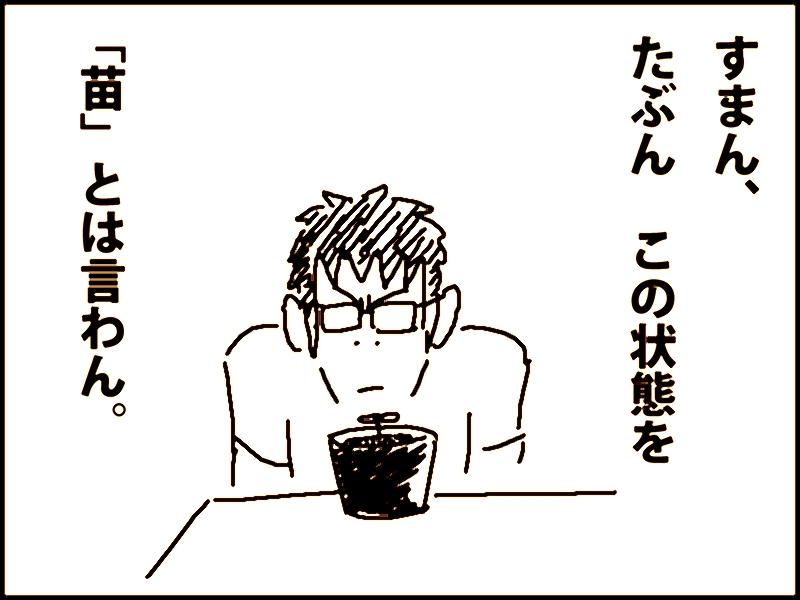 13-07-3a.jpg