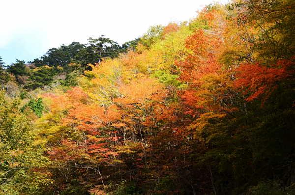 13okumonobe4.jpg