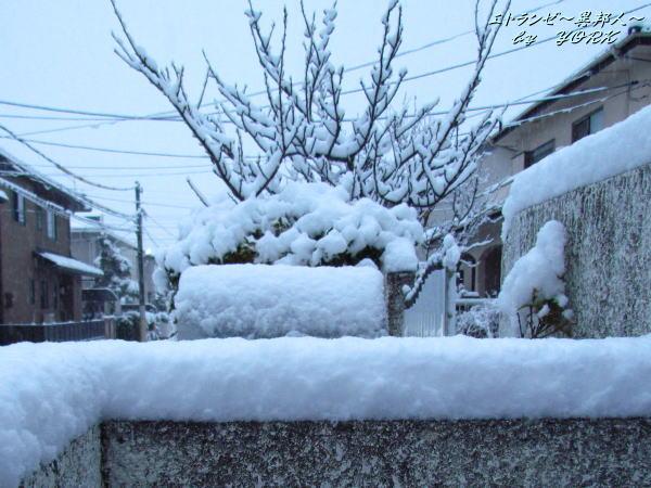 1149積雪約10cm140208