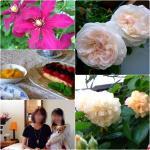 20130517shinobu.jpg
