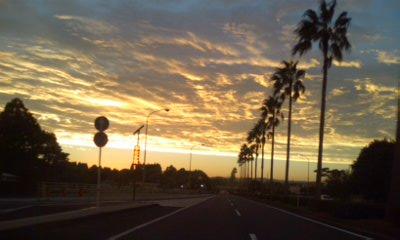台風一過の帰り路