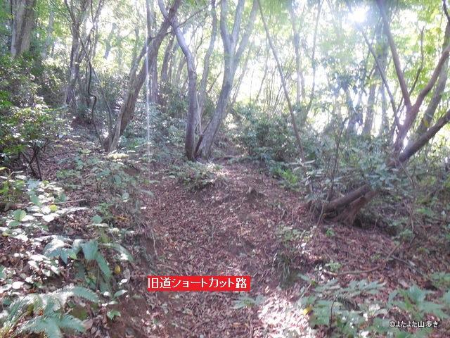 DSCN2884.jpg