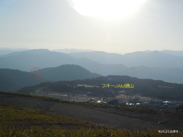 DSCN3195.jpg
