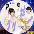 ヒリヒリの花 タイプB(DVD)