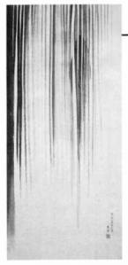nec271-1.jpg