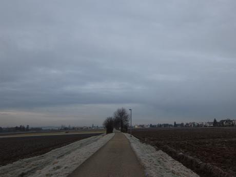 冬のボウボウ通勤路2